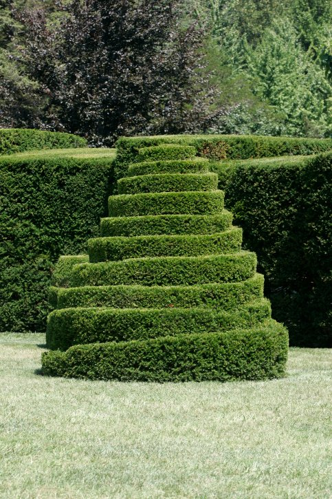 Topiary stairway rising up a manicured hedge
