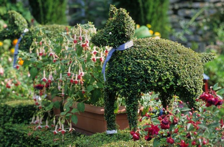 Topiary dog among flower garden