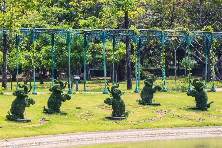 Field of five topiary elephants