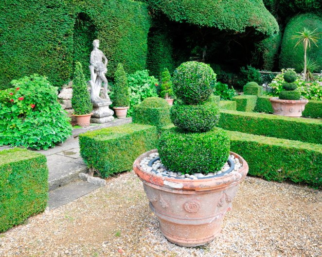 Large pot with a topiary tree in the shape of three stacked balls