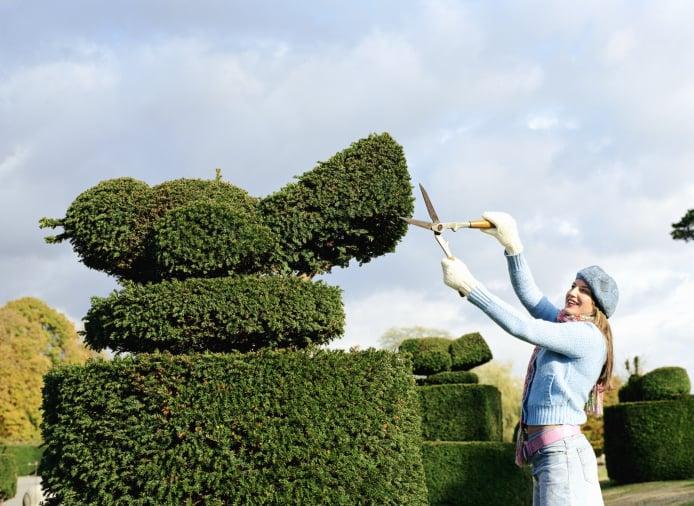 Women sculpting a topiary bird