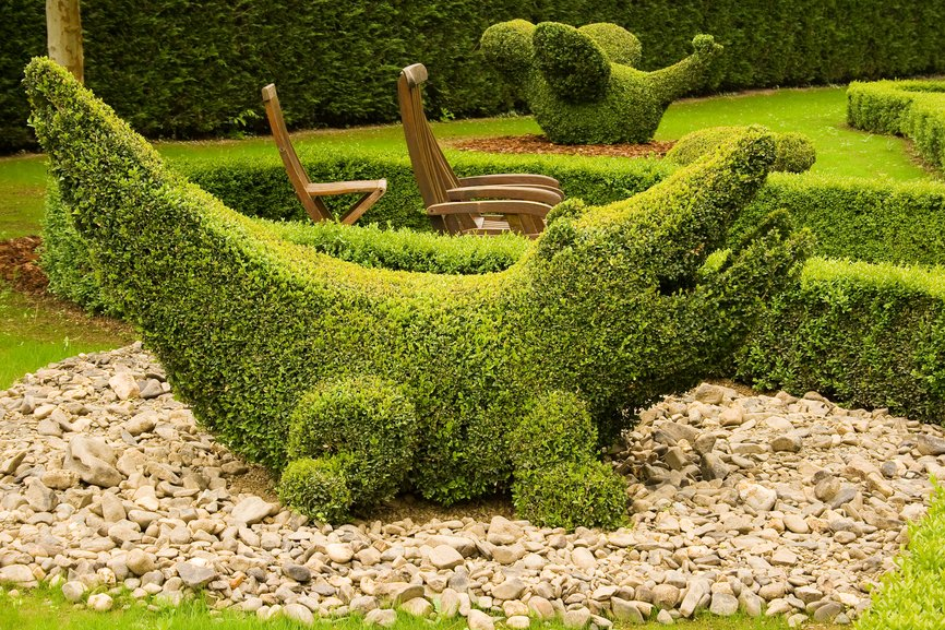 Topiary crocodile