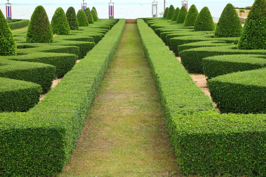 Large garden with topiary edge forming long walkway surrounded by topiary shapes