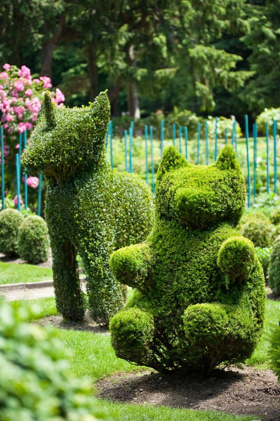 Topiary dog and bear